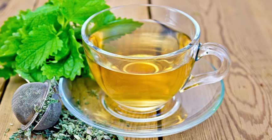 Keto Melisa Çayı, Ketojenik Melisa Çayı